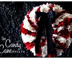 candy-cane-craft