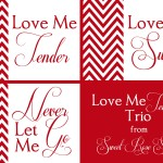 Love Me Tender Collage Berry Red