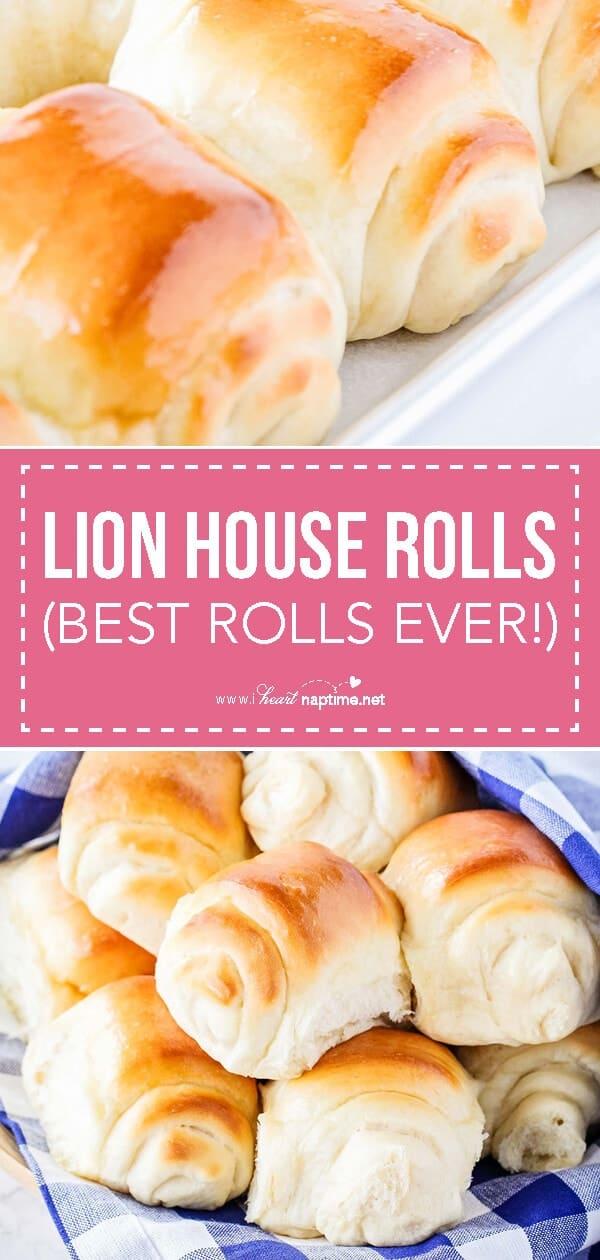 lion house rolls