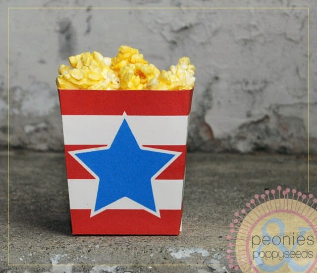 fourth of july  treat box PREVIEW1