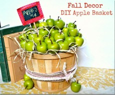 Super cute DIY apple basket