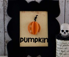 framed pumpkin