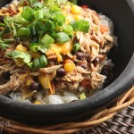 Slow Cooker Recipes 15