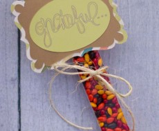 Simple and cute grateful gift on iheartnaptime.net #thanksgiving #craft
