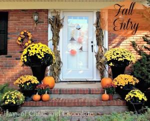 Fall Entry 3
