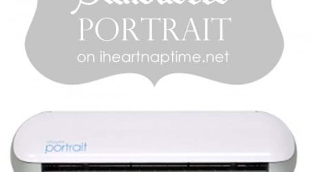 Win the AMAZING Silhouette Portrait on iheartnaptime.net -200 value!!