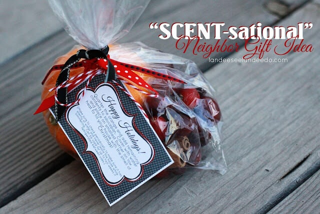 gift bag with potpourri ingredients