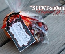 scent-sational neighbor #gift by Landee see, Landee do on iheartnaptime.net