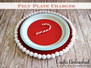 Felt-Plate-Charger-Graphic1