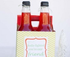 Christmas gift idea with FREE printable by iheartnaptime.net