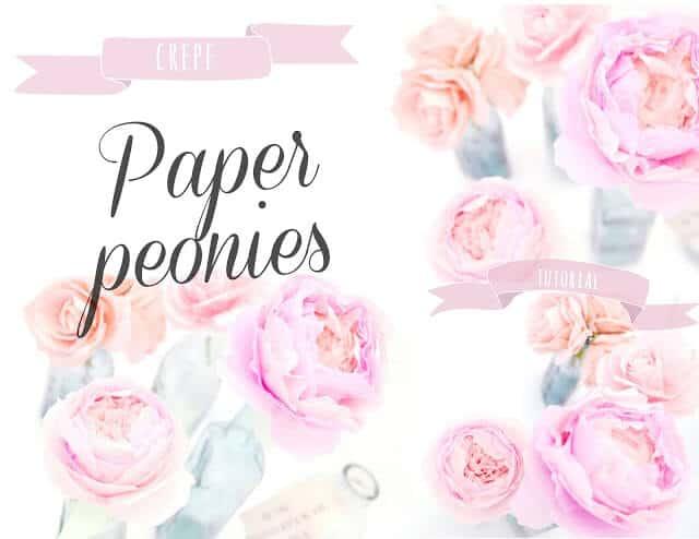 Crepe paper peonies-001
