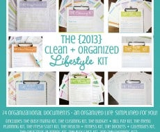 Clean mama printables giveaway on iheartnaptime.net