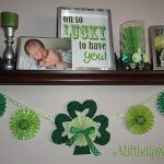 Best Saint Patricks Food and Crafts 14