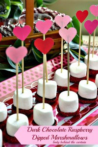 Lady-Behind-The-Curtain-Dark-Chocolate-Raspberry-Dipped-Marshmallows-1