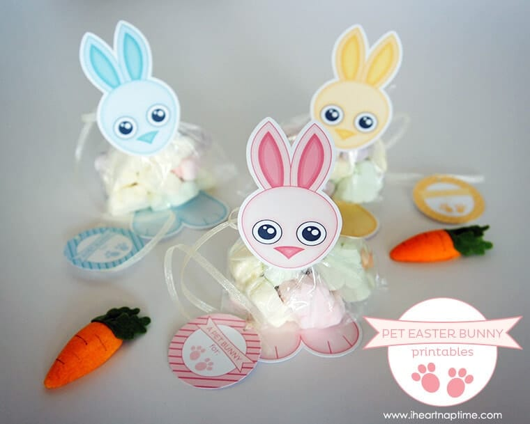 15 awesome easter crafts to make pet easter bunny printables negle Images