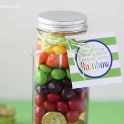 Skittles rainbow pot of gold on I Heart Nap Time w/ free printable!