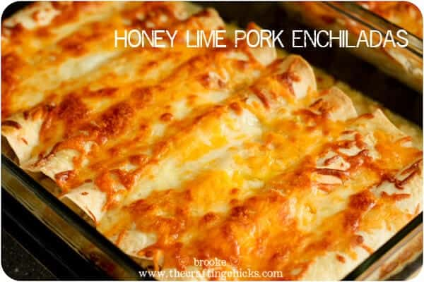 Easy mexican enchiladas recipes