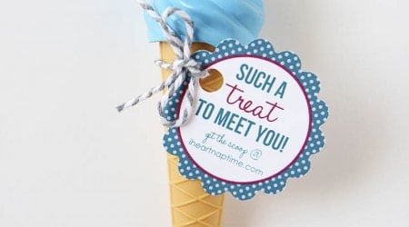 ice cream cone pen favor