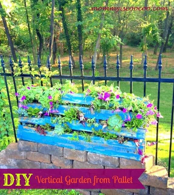 vertical garden from pallet
