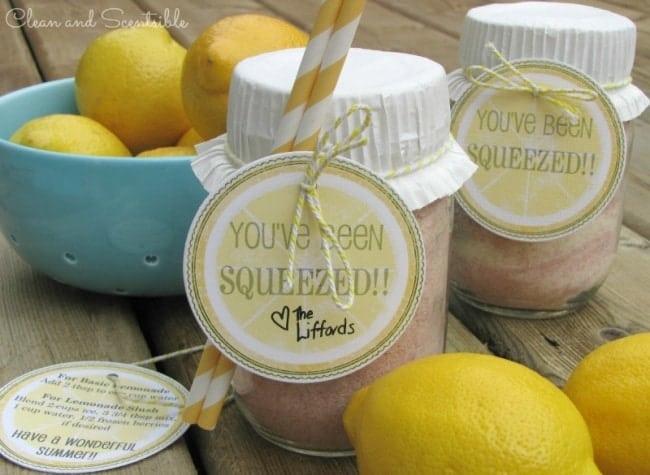 Lemonade-Gift-Idea-Title