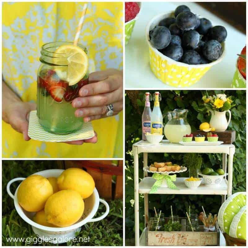 Summer-Lemonade-with-Garnish