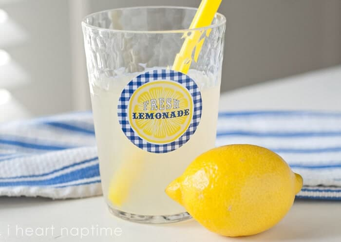 andersruff-Lemonade-Free-Printable-06