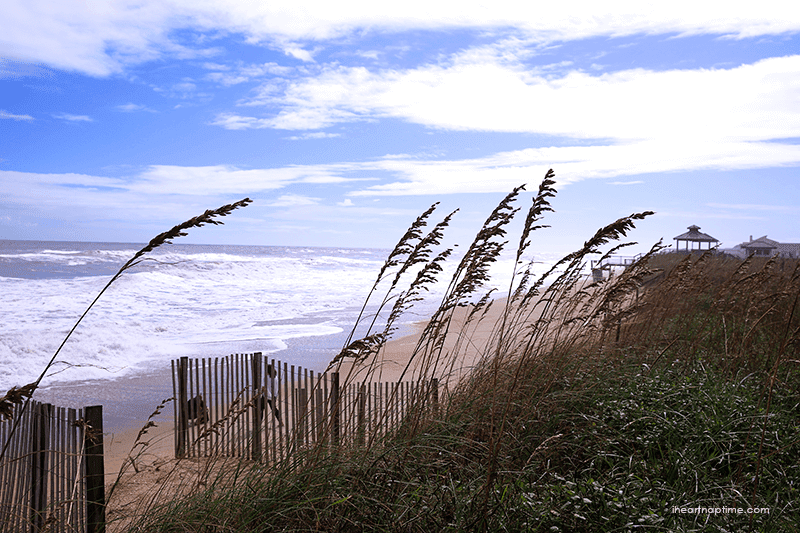 Outer banks in North Carolina Fall leaves by Jamielyn Nye,  I Heart Nap Time