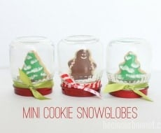 Mini Cookie Snowglobes1