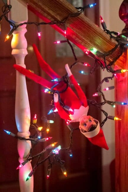 Elf tangled up in lights