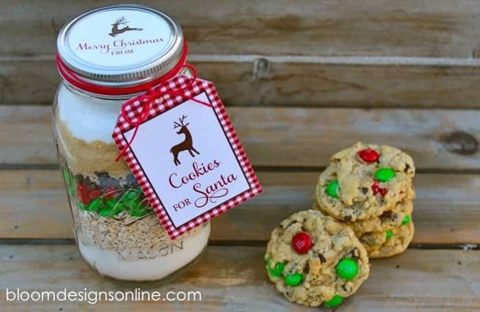 cookie for santa