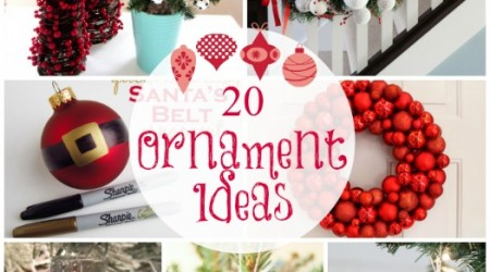20 Ornament Ideas