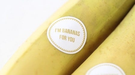 I'm bananas for you free printable