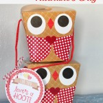 love's a hoot gift boxes