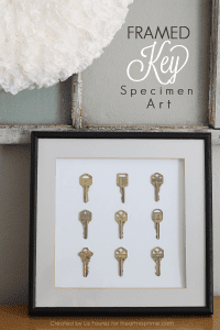 Framed-Key-Specimen-Art-final