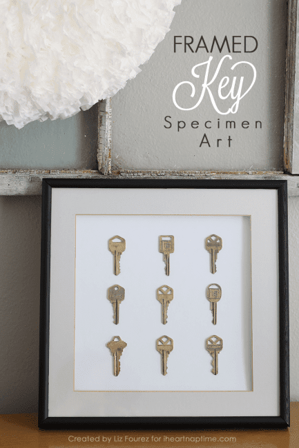 Framed Key Specimen Art | Love Grows Wild for iheartnaptime.net