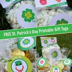 FREE St. Patrick's Day Printable Gift Tags on www.iheartnaptime.com #freeprintable #stpatricksday