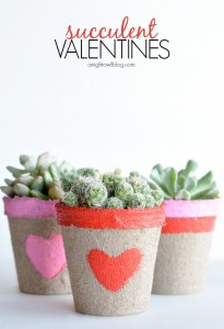 Succulent-Valentines