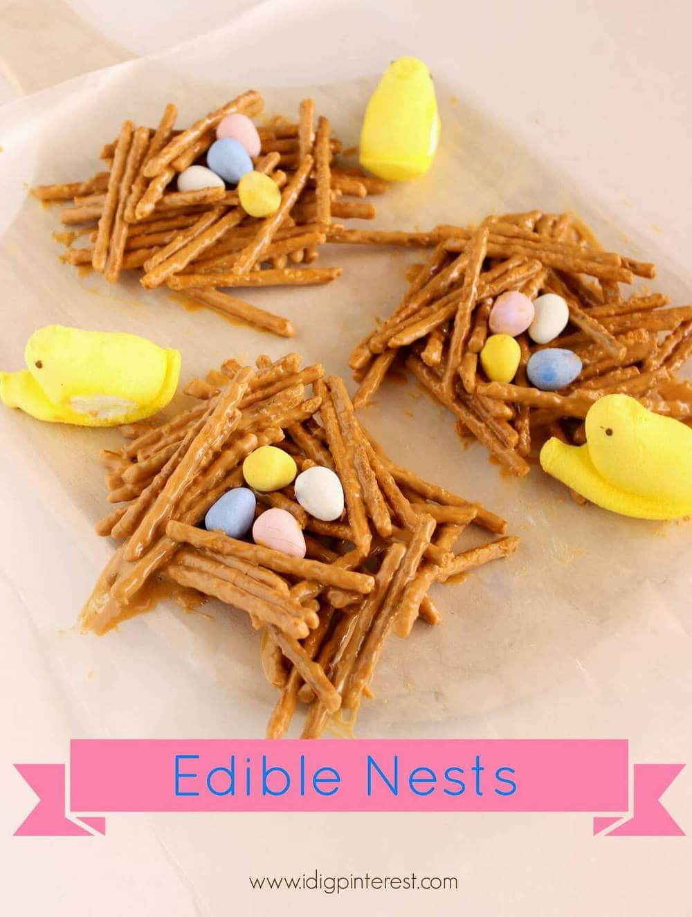 Edible Nests1