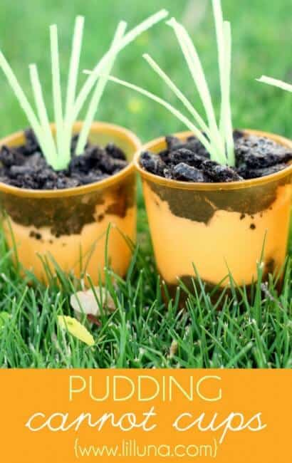 pudding carrot cups on grass