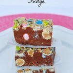 reeses_pieces_fudge 1