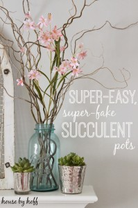 super-easy super-fake succulent pots