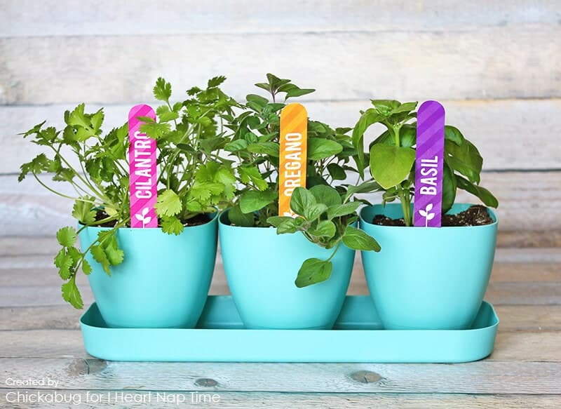 Free printable herb garden markers on iheartnaptime.com