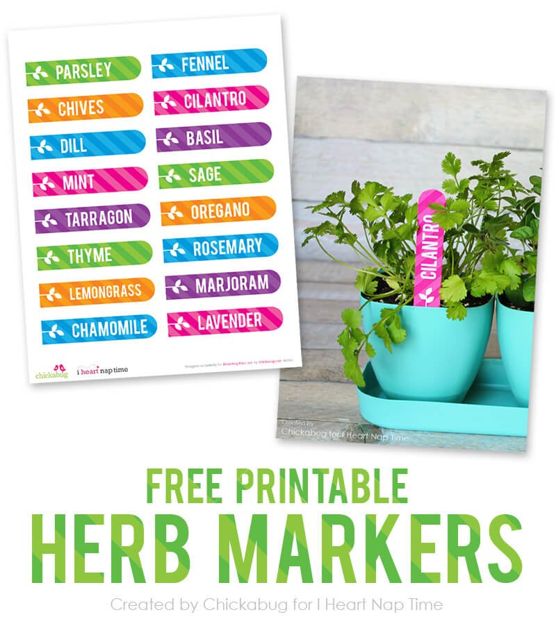 DIY Mason Jar Lid Garden Markers + Free Printables