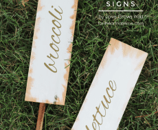 Learn how to make these beautiful garden marker signs for all your plants this summer!   by Love Grows Wild for iheartnaptime.com