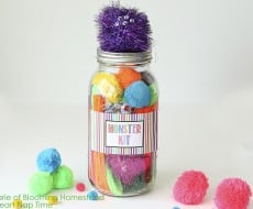 DIY Mason Jar Monster Kit by Blooming Homestead
