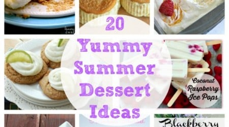 20 Summer Dessert Ideas {Link Party Features)
