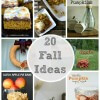 20 Fall Ideas