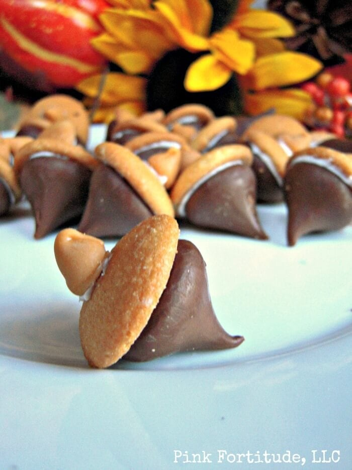 acorn treats