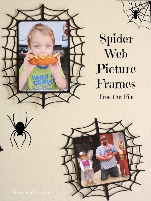 Spider-Frame-1