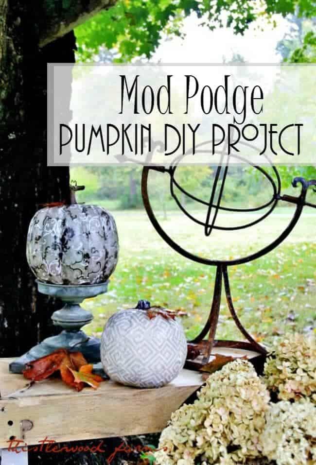 Thistlewood-Decorative-Pumpkin-Challenge1